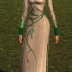 Exquisite Elven Dress