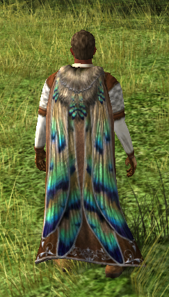 Cloak Of The Dragonfly