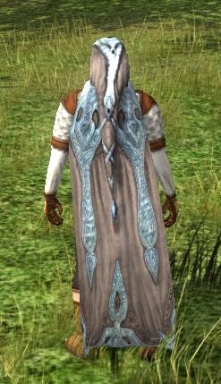 Hooded Cloak Of The Windsinger